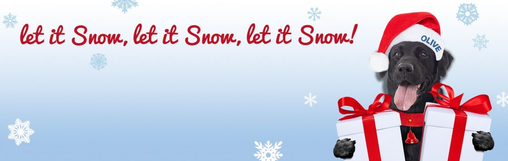 Let_it_Snow_Webslider_v2_002_